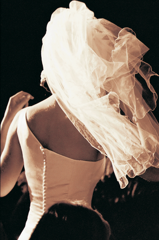 veil-blows-in-wind-to-reveal-back-of-dress