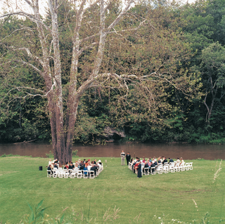 ceremony-chairs-under-sycamore-tree-on-grassy-lawn