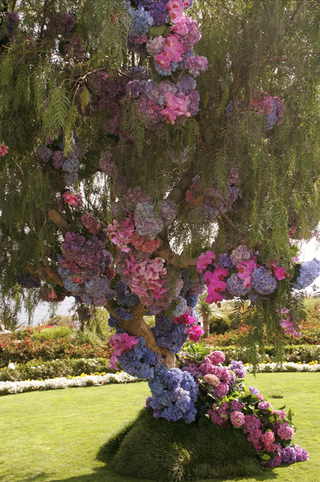 bunches-of-hydrangeas-in-man-made-tree-at-wedding-ceremony