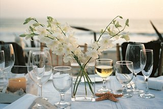 simple-centerpiece-with-sand-starfish-and-seashells