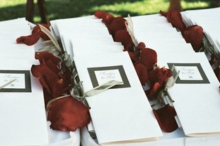 rosalynn-sumners-and-bob-kain-ceremony-programs