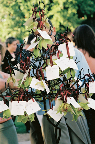 place-cards-on-green-orchids-tied-to-small-tree