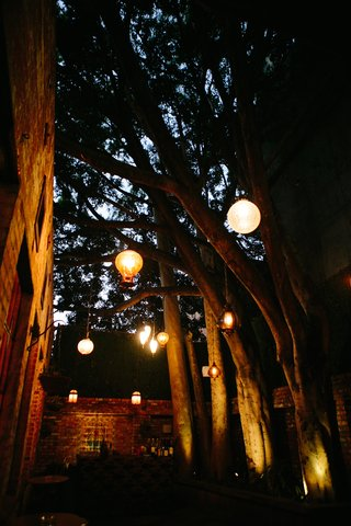 moroccan-lantern-and-orb-lanterns-hanging-from-tree