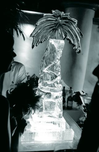 black-and-white-photo-of-palm-tree-sculpture