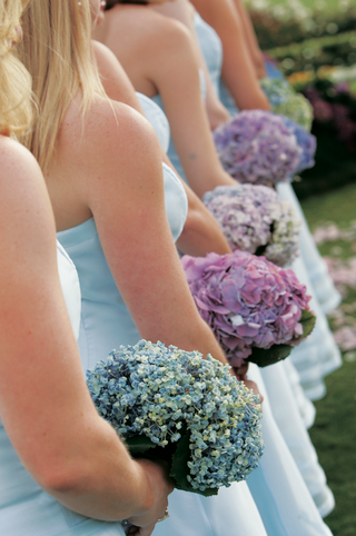 bridesmaids-held-hydrangea-flowers-in-different-colors