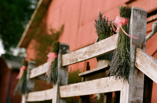 lavender-tied-to-rustic-fence-with-pink-ribbon