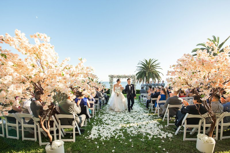 Newlyweds' Recessional Toward Cherry Blossoms