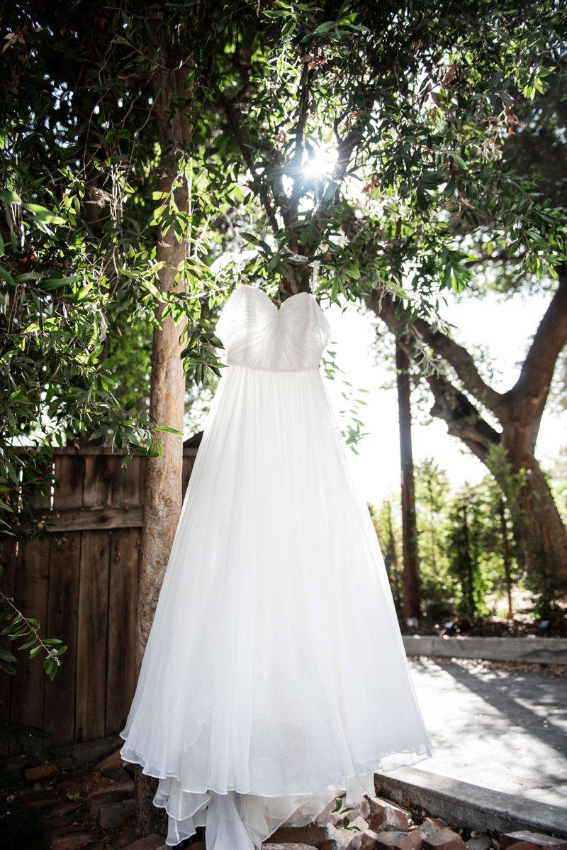 Bride's Wedding Dress in Tree
