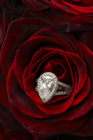 large-pear-diamond-halo-engagement-ring-with-pave-splint-shank-in-red-rose