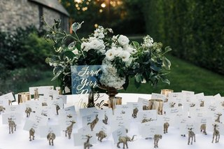 jillian-murray-and-dean-geyer-wedding-reception-escort-card-idea-animal-for-different-table-names