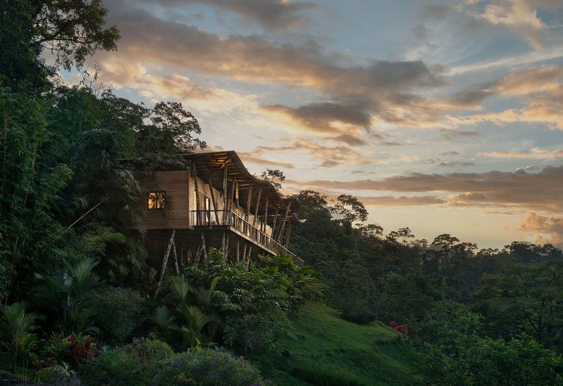 ORIGINS Luxury Lodge - Villa Vertigo Above Rainforest