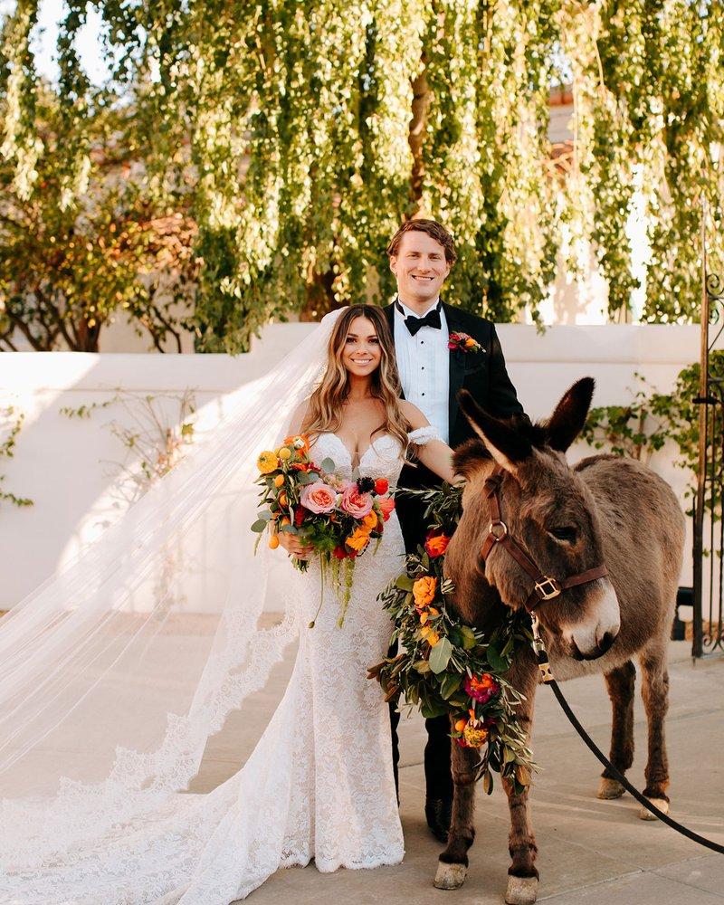 Bride & Groom with Donkey