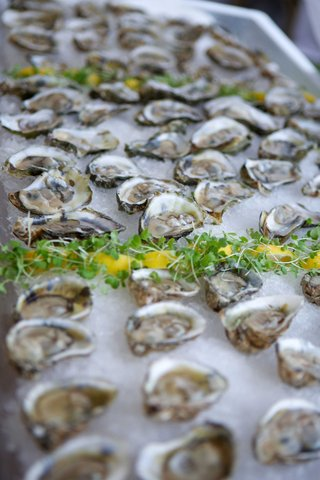 sea-side-oysters-battle-point-oysters-sewansecott-oysters-on-ice-hors-doeuvres-appetizers