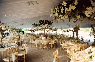 tented-reception-with-twinkle-lights-grapewood-greenery
