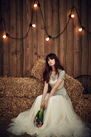 jenny-packham-2017-bridal-collection-dixie-wedding-dress-silver-beading-short-sleeves-bodice-waist