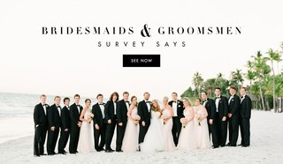 bride-and-groom-with-tuxedoed-groomsmen-and-bridesmaids-in-light-pink-dresses-on-the-beach
