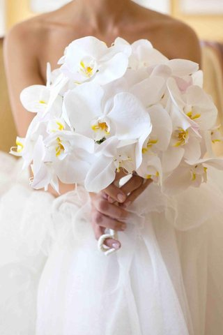 bride-holding-single-variety-white-orchids