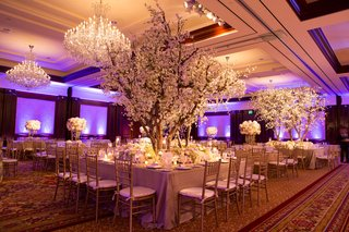 wedding-reception-with-plum-uplighting-cherry-blossom-trees-with-white-flowers-gold-tablecloths