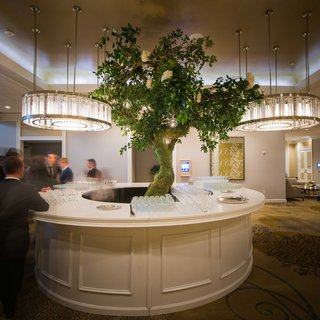 a-round-bar-under-round-chandeliers-with-a-large-tree-rising-from-the-center