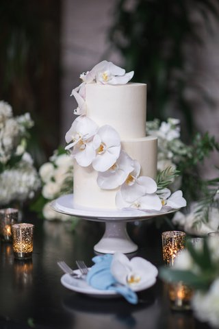 small-two-tier-cake-with-cascading-orchids-down-the-side