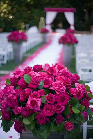 ceremony-aisle-pink-rose-decorations-for-garden-wedding