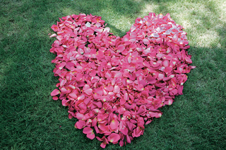 hot-pink-flowers-in-shape-of-heart-on-grass