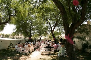 trees-wrapped-with-tulle-and-white-chairs