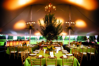 tented-reception-with-a-boxed-tree-and-chandelier