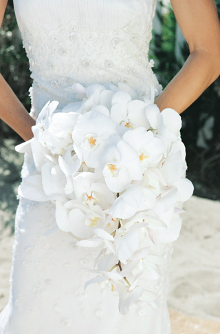 cascading-white-phalaenopsis-orchid-bouquet