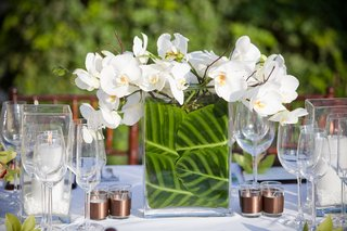 small-centerpiece-with-white-orchid-and-zebra-leaves