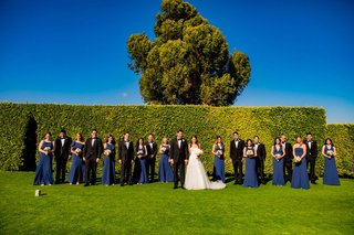 wedding-party-photo-on-grass-lawn-hedge-wall-tree-blue-skies-navy-blue-dresses-tuxedos-for-groomsmen