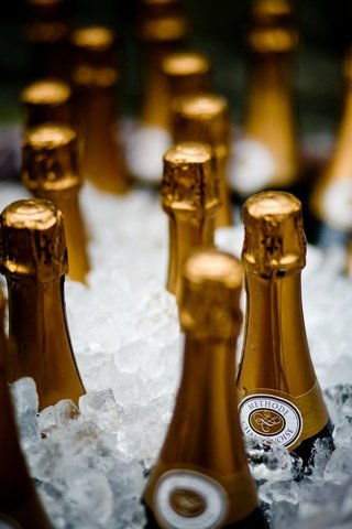 gold-champagne-bottles-in-bucket-of-ice-at-wedding-reception