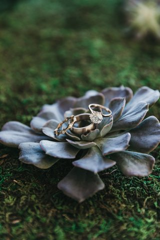 old-european-cut-diamond-engagement-ring-placed-on-blue-succulent-with-wedding-bands