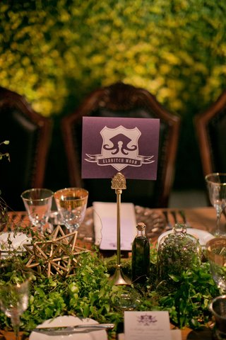 alexis-cozombolidis-and-hunter-pence-wedding-reception-gold-stars-greenery-terrariums-trading-game