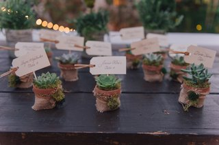 nick-carter-wedding-rustic-escort-cards-succulents