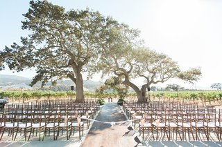 pitch-perfect-stars-anna-camp-skylar-astin-wedding-ceremony-space-outdoors-vineyard-california