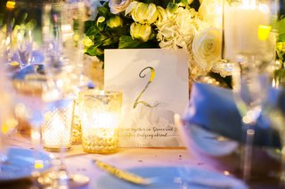 wedding-reception-personalized-table-number-metallic-with-fact-about-couple-2-travel-two-wedding
