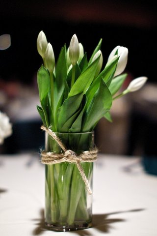 white-tulips-with-green-leaves-in-vase-tied-with-rope