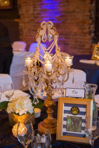 gold-candelabrum-with-crystals-and-dog-table-name