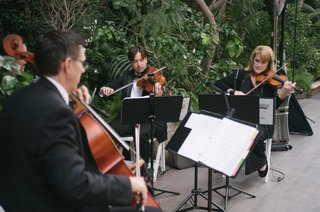 enchanted-evening-chamber-ensemble-playing-string-music-at-outdoor-wedding-ceremony
