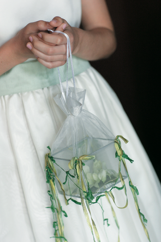flower-girl-carries-flowers-in-a-metal-and-glass-box-inside-a-sheer-fabric-bag