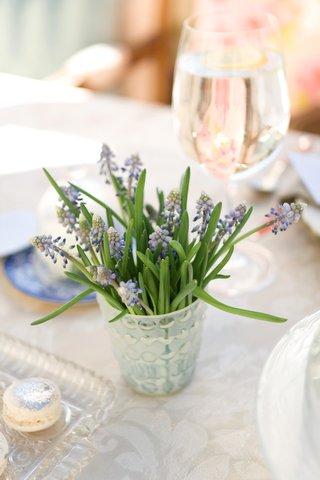 fresh-lavender-plant-in-vase