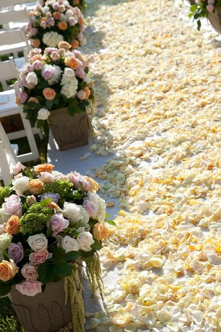 ivory-flower-petals-on-wedding-ceremony-aisle