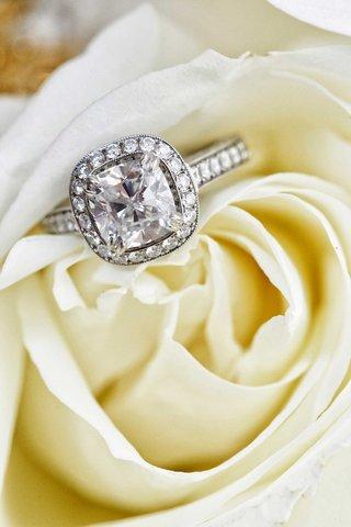 white-rose-holding-diamond-halo-engagement-ring-cushion-cut-pave-band-setting