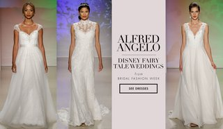 see-more-wedding-dresses-from-the-2017-disney-fairy-tale-weddings-bridal-collections-by-alfred-angel