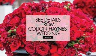 colton-haynes-and-jee-leatham-wedding-video