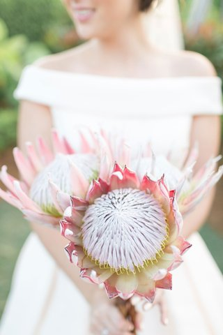 bride-in-off-shoulder-ball-gown-wedding-dress-holding-large-protea-flower-bouquet-three-protea