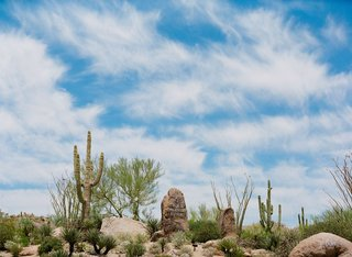 four-seasons-resort-scottsdale-at-troon-north-landscape-shot