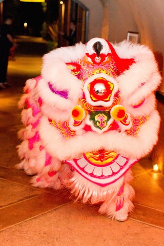 vineyard-wedding-with-a-chinese-lion-dance-with-white-red-yellow-pink-lion