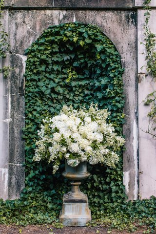 urn-with-white-hydrangea-and-greenery-roses-in-front-of-wall-of-ivy
